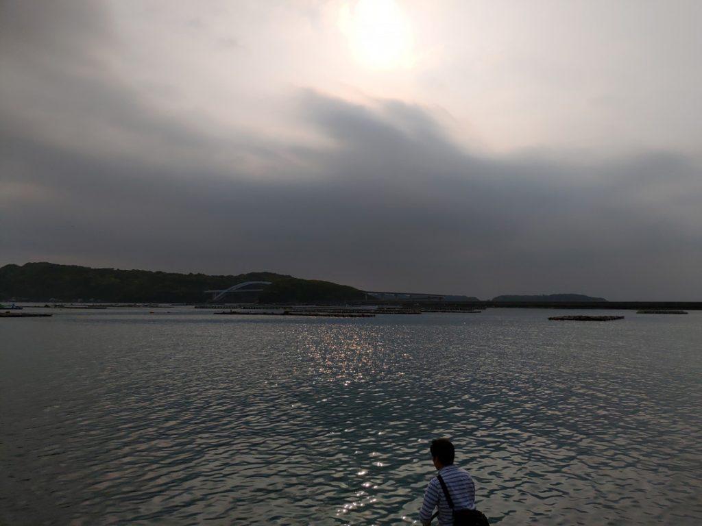 串本港南エギング
