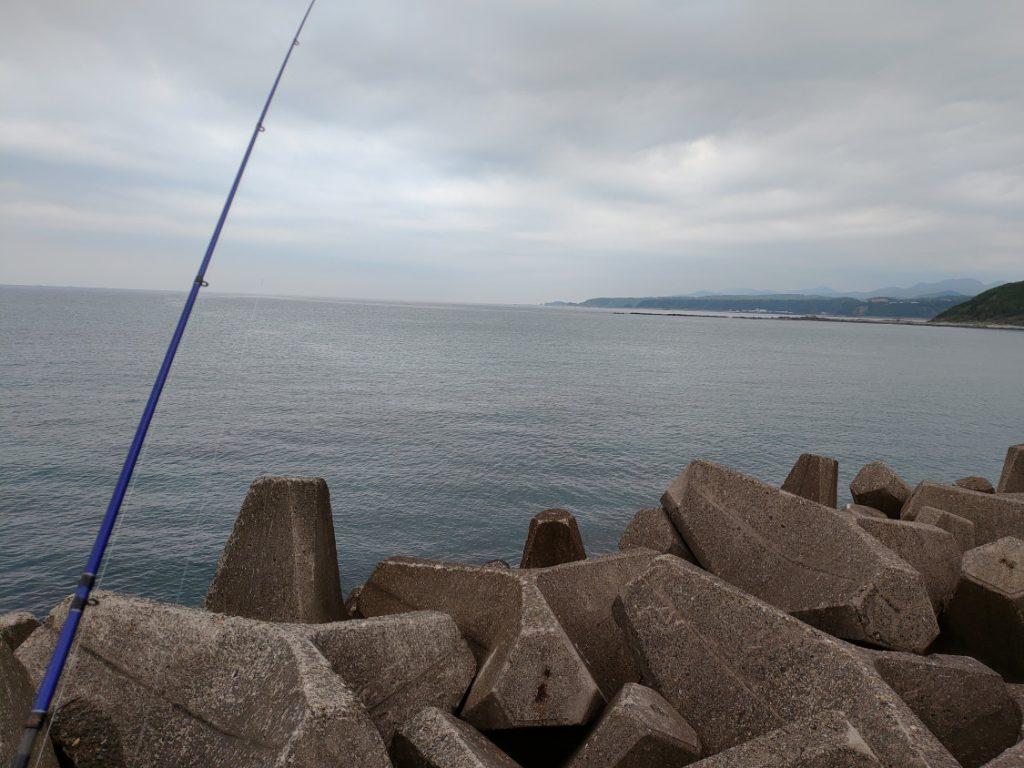 須賀の浜漁港(上浦漁港)エギング テトラ