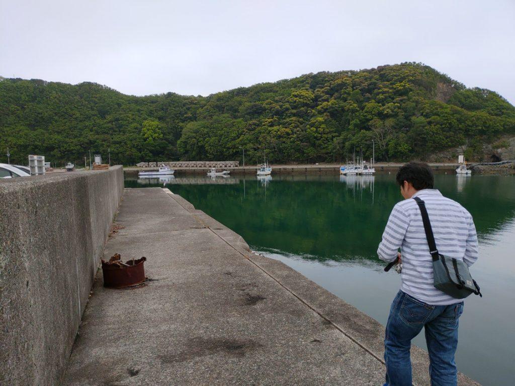 有田漁港エギング 墨跡いっぱい